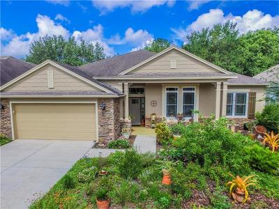 Land O Lakes Single Family Home For Sale: 7521 Kickliter Lane