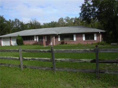 Brandon FL Single Family Home For Sale: $370,000