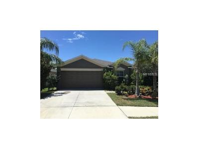 Hernando County, Hillsborough County, Pasco County, Pinellas County Rental For Rent: 950 Seminole Sky Drive