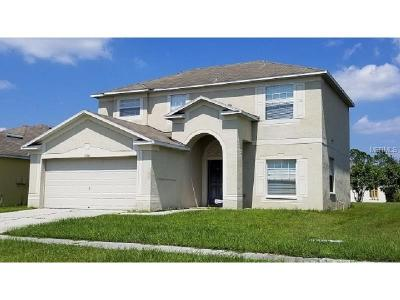 Riverview Single Family Home For Sale: 12004 Butler Woods Circle