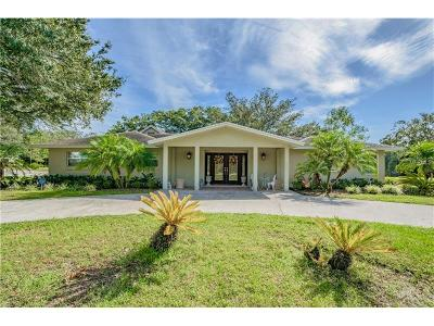 Tampa Single Family Home For Sale: 3018 Lake Ellen Drive