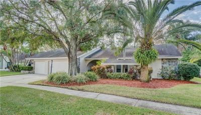 Tampa Single Family Home For Sale: 13708 Chestersall Drive