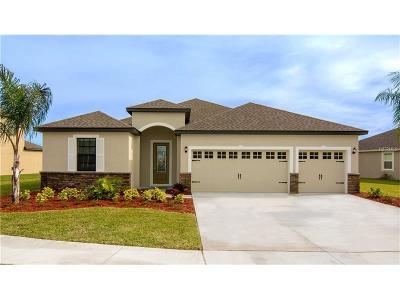 Lakeland Single Family Home For Sale: 2358 Sebago Drive