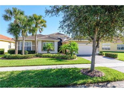 Hillsborough County Single Family Home For Sale: 5065 Ruby Flat Drive