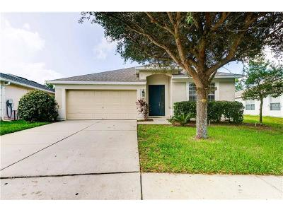 Brooksville Single Family Home For Sale: 602 Sea Holly Drive