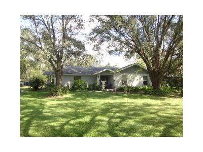Plant City Single Family Home For Sale: 4165 El Shaddiai Square