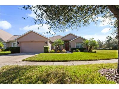 Apollo Beach Single Family Home For Sale: 6705 Cromwell Garden Drive