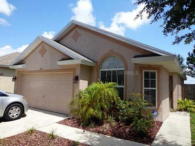 Apollo Beach Single Family Home For Sale: 6935 Exeter Park Place