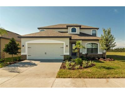 Riverview Single Family Home For Sale: 12302 Thicket Wood Drive