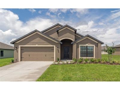 Riverview Single Family Home For Sale: 11606 Winterset Cove Drive