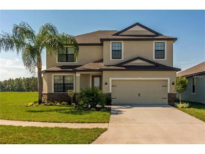 Riverview Single Family Home For Sale: 11614 Winterset Cove Drive