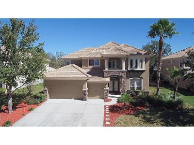New Port Richey Single Family Home For Sale: 11301 Biddeford Place