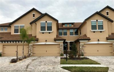 Weslely Chapel, Wesley Chapel Townhouse For Sale: 4776 Wandering Way