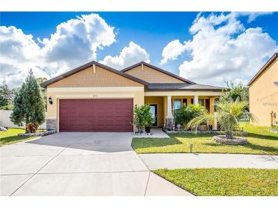 Brooksville Single Family Home For Sale: 653 Petal Mist Lane