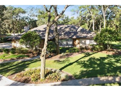 Valrico Single Family Home For Sale: 2913 Chelsea Woods Drive