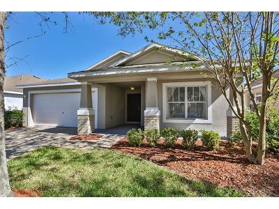 Apollo Beach Single Family Home For Sale: 6630 Cambridge Park Drive