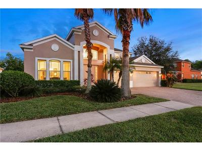 Tampa Single Family Home For Sale: 10436 Canary Isle Drive