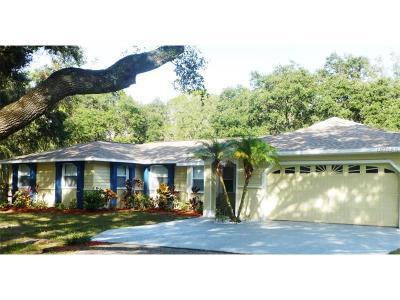 Wimauma Single Family Home For Sale: 1401 Pinetree Circle