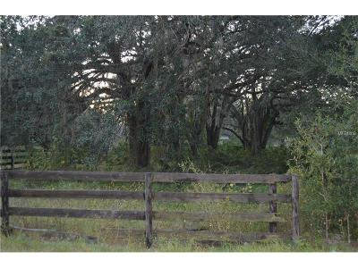 Lutz Residential Lots & Land For Sale: 0 30th Street
