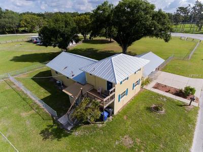 Wimauma Single Family Home For Sale: 1003 7th Street