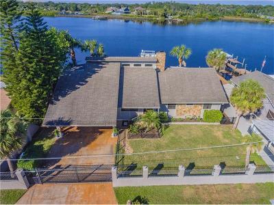 Gibsonton Single Family Home For Sale: 8508 Magnolia Street