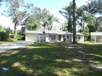 Brandon Single Family Home For Sale: 123 Sandra Avenue