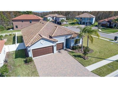Land O Lakes FL Single Family Home For Sale: $319,900