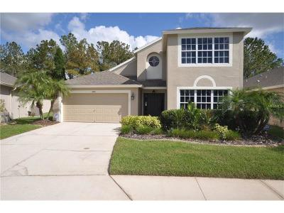 Wesley Chapel Single Family Home For Sale: 5424 Lookout Pass