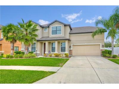 Wimauma Single Family Home For Sale: 14233 Alistar Manor Drive
