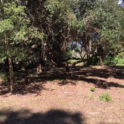 Lutz Residential Lots & Land For Sale: Blackwell Lane