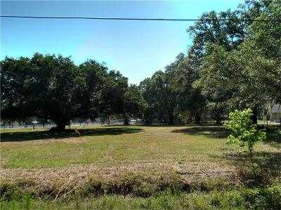 Plant City Residential Lots & Land For Sale: 2624 Hawk Griffin Road