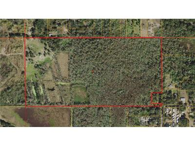 Hernando County, Hillsborough County, Pasco County, Pinellas County Residential Lots & Land For Sale: Black Dairy Road