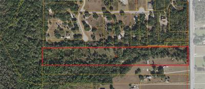 Plant City Single Family Home For Sale: 7117 S County Line Road