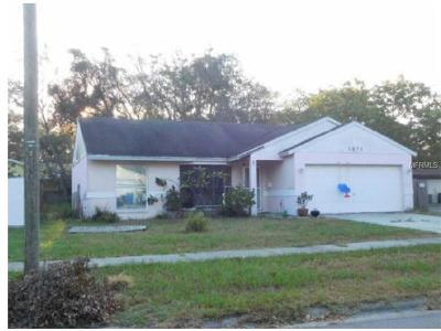Saint Petersburg, St Pete, St Peterburg, St Petersburg, St. Petersburg Single Family Home For Sale