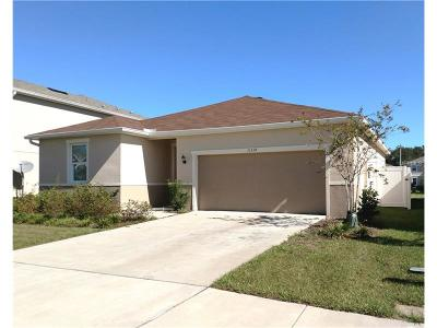 Gibsonton Single Family Home For Sale: 11514 Southern Creek Drive