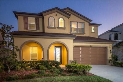 Wesley Chapel Single Family Home For Sale: 28892 Perilli Place