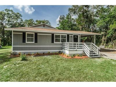 Lutz Single Family Home For Sale: 18812 Carr Drive