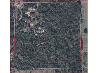 Lithia Residential Lots & Land For Sale: 0 Edison Road