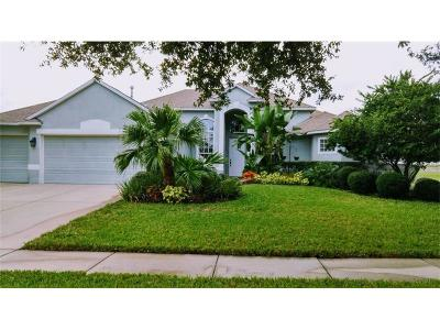 Hernando County, Hillsborough County, Pasco County, Pinellas County Single Family Home For Sale: 418 Golden Elm Drive