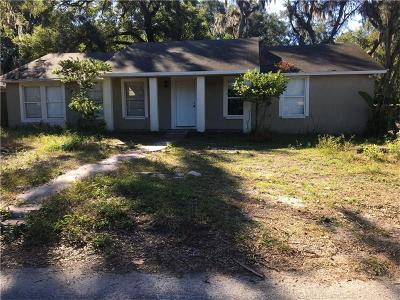 Seffner Single Family Home For Sale: 12009 Park Avenue