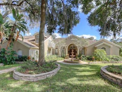Valrico Single Family Home For Sale: 2537 Centennial Falcon Drive