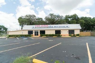 Valrico Commercial For Sale: 101 S Saint Cloud Avenue