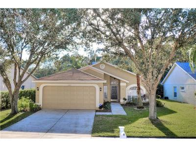 Hillsborough County Single Family Home For Sale: 12957 Royal George Avenue