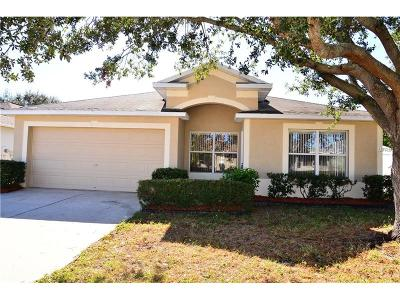 Riverview Single Family Home For Sale: 12107 Pepper Creek Court