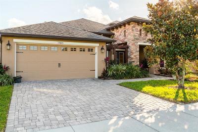 Lithia Single Family Home For Sale: 15605 Sunset Run Lane