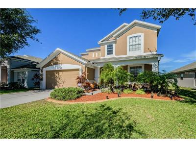 Riverview Single Family Home For Sale: 12332 Cedarfield Drive