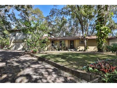 Riverview Single Family Home For Sale: 7242 Alafia Ridge Loop