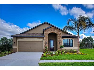 Riverview Single Family Home For Sale: 11604 Winterset Cove Drive