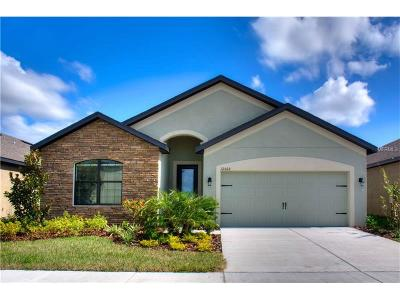 Riverview Single Family Home For Sale: 11827 Winterset Cove Drive