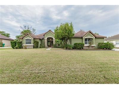 Montverde Single Family Home For Sale: 16419 Magnolia Bluff Drive